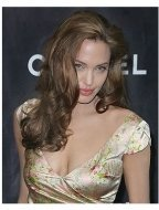 Angelina Jolie at the Premiere Women in Hollywood Luncheon
