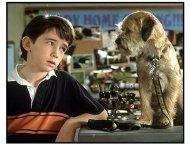 """""""Good Boy!"""" Movie Still: Liam Aiken"""