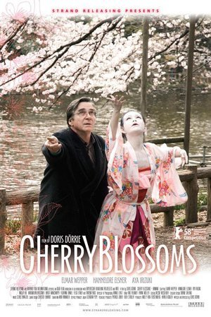 Cherry Blossoms: Hanami