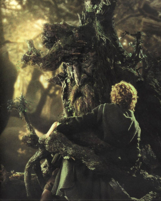 Lord of the Rings, Ent