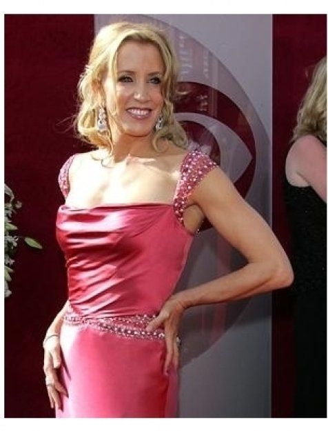 Felicity Huffman on the red carpet at the 57th Annual Primetime Emmy Awards